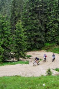 Mountain bike on the Asiago Plateau (ph: Roberto Costa Ebech).