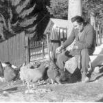 Among his chickens (January 1971).